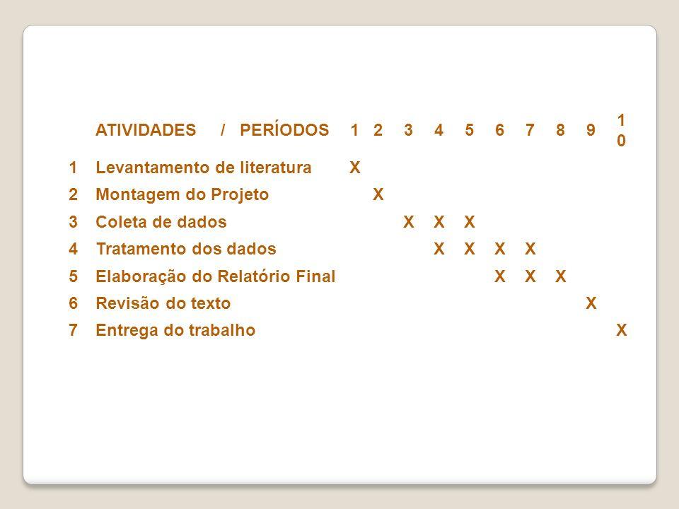 ATIVIDADES / PERÍODOS. 1. 2. 3. 4. 5. 6. 7. 8. 9. 10. Levantamento de literatura.