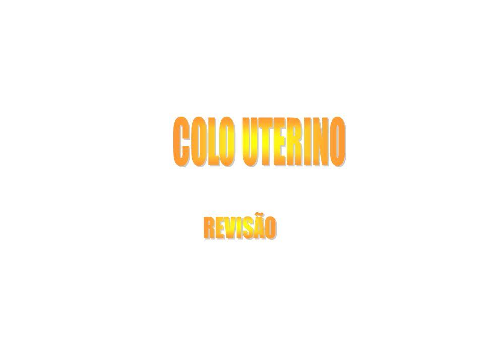 COLO UTERINO REVISÃO
