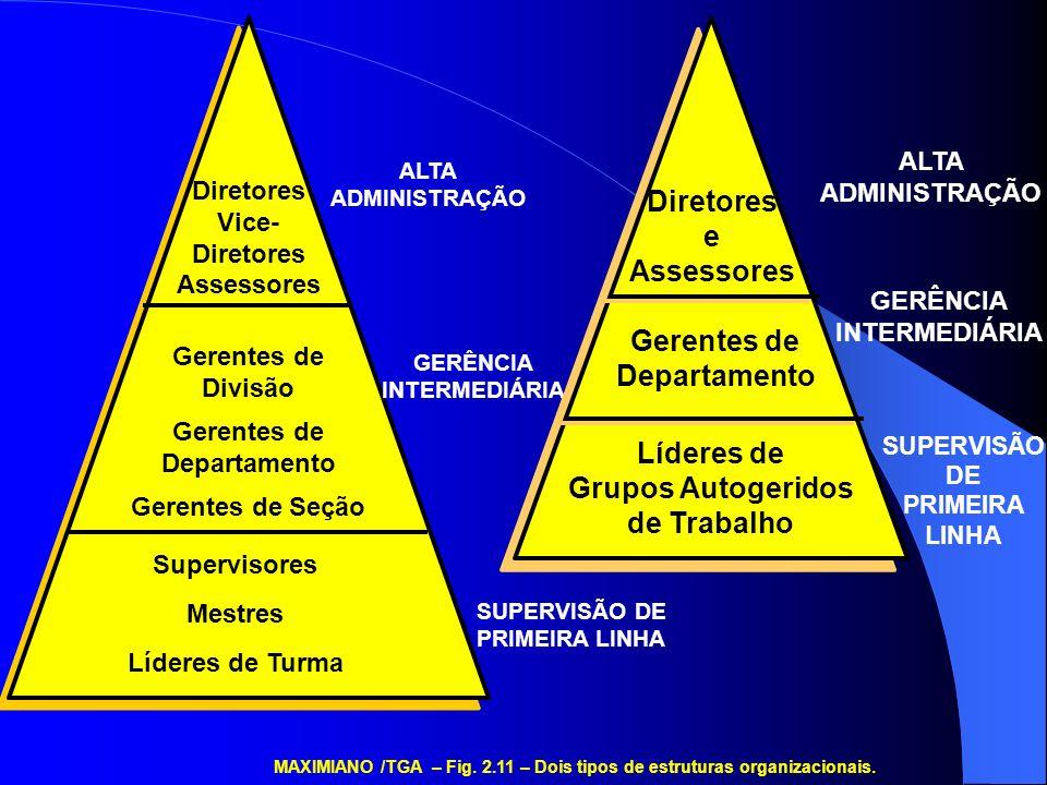 MAXIMIANO /TGA – Fig. 2.11 – Dois tipos de estruturas organizacionais.