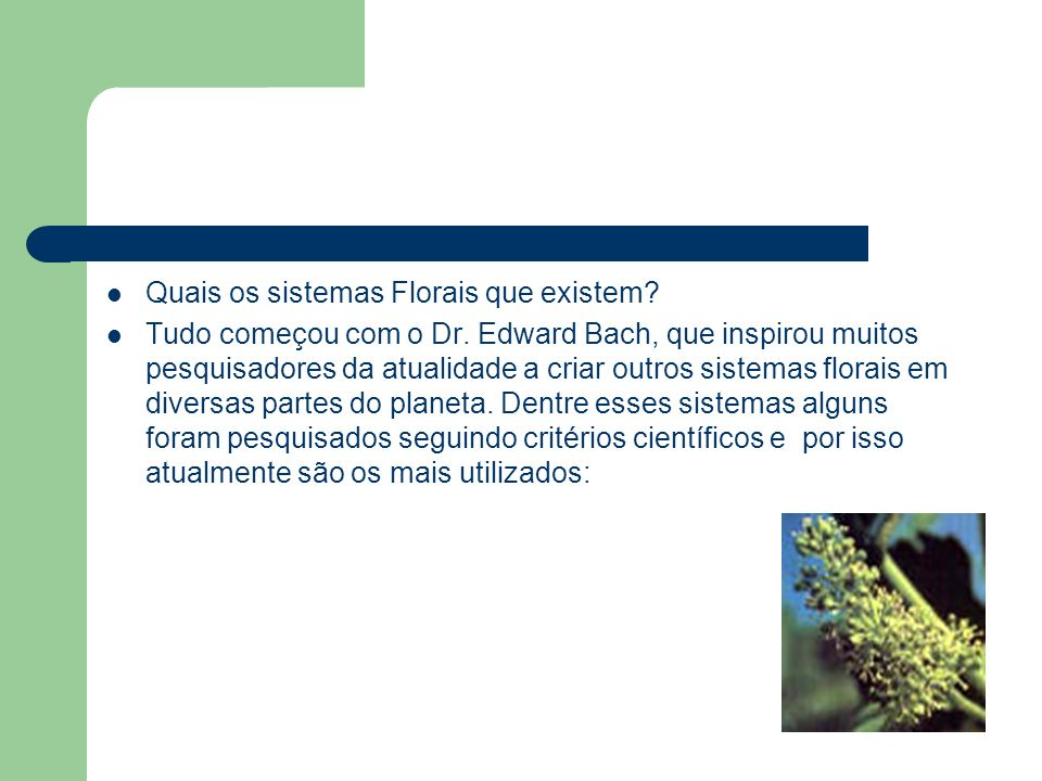 Quais os sistemas Florais que existem