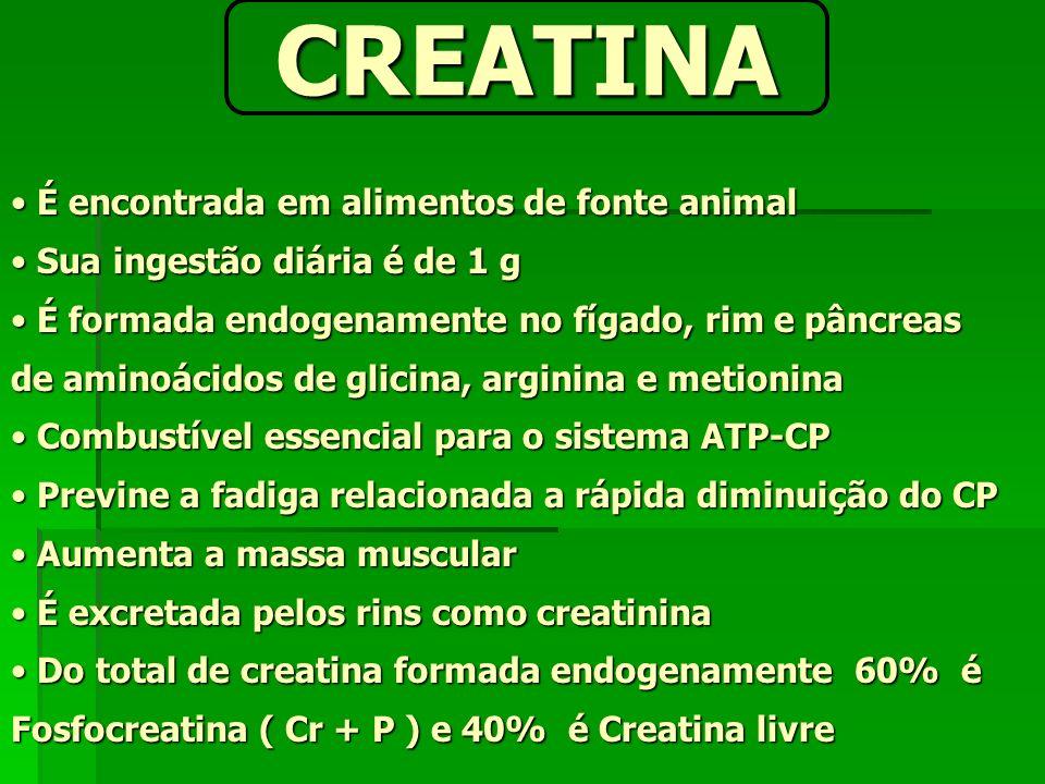CREATINA É encontrada em alimentos de fonte animal