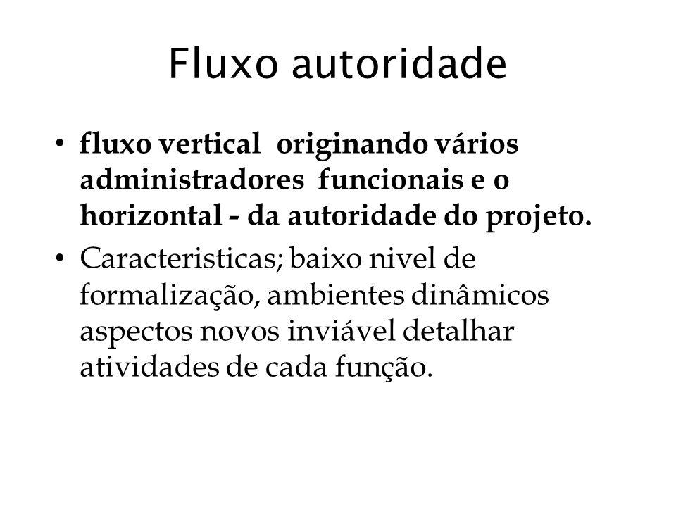 Fluxo autoridade fluxo vertical originando vários administradores funcionais e o horizontal - da autoridade do projeto.
