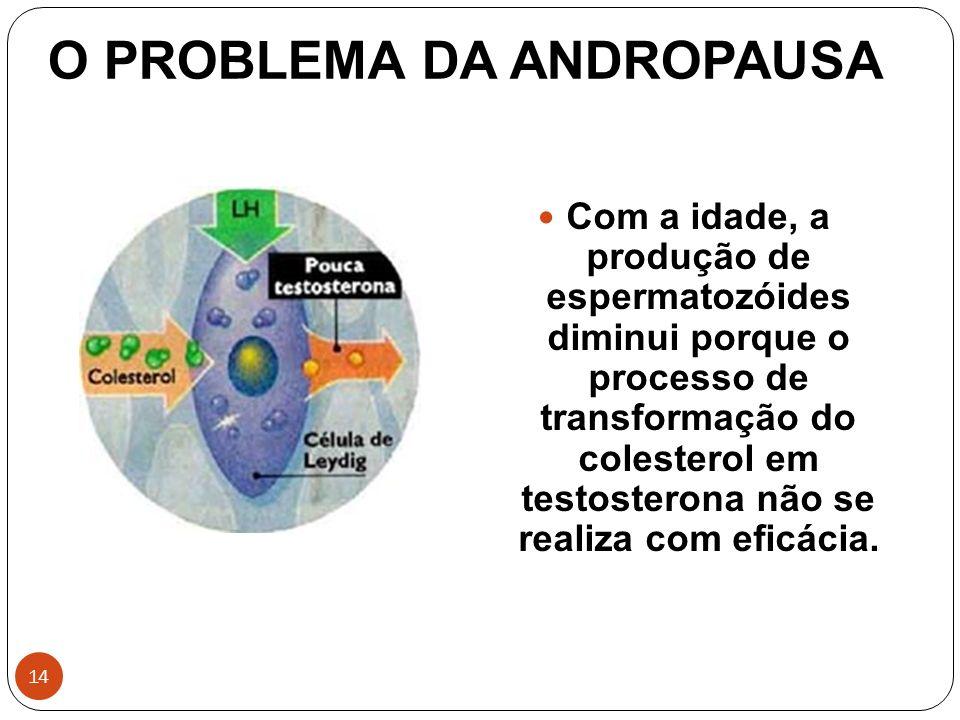 O PROBLEMA DA ANDROPAUSA