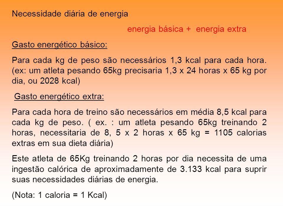 Necessidade diária de energia