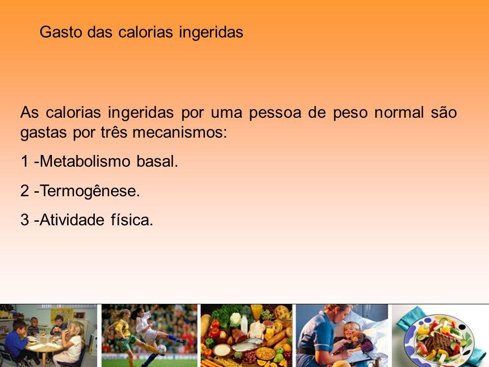 Gasto das calorias ingeridas