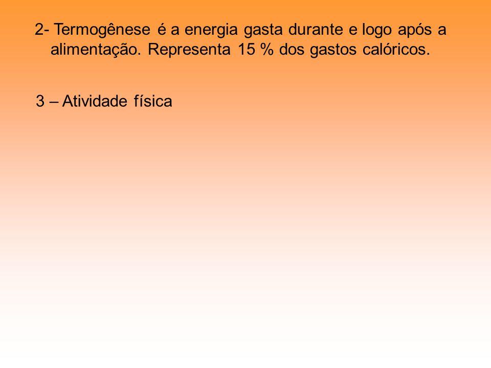 2- Termogênese é a energia gasta durante e logo após a alimentação