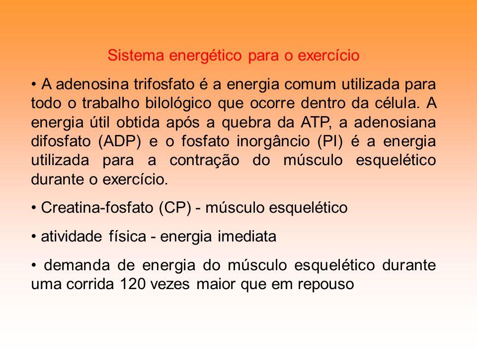 Sistema energético para o exercício
