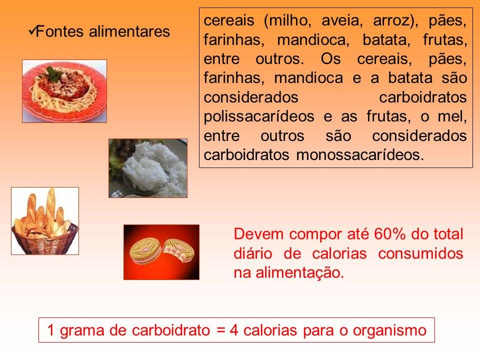1 grama de carboidrato = 4 calorias para o organismo