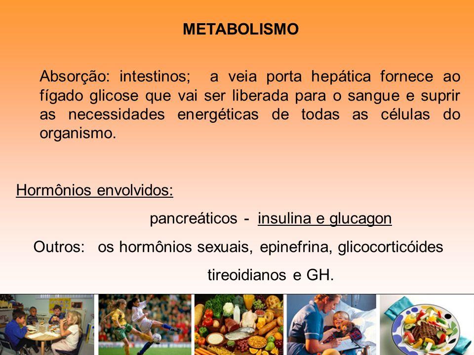 Hormônios envolvidos: pancreáticos - insulina e glucagon