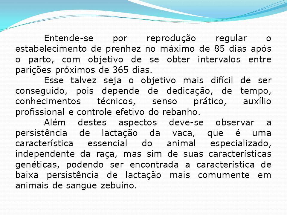 Entende-se por reprodução regular o estabelecimento de prenhez no máximo de 85 dias após o parto, com objetivo de se obter intervalos entre parições próximos de 365 dias.