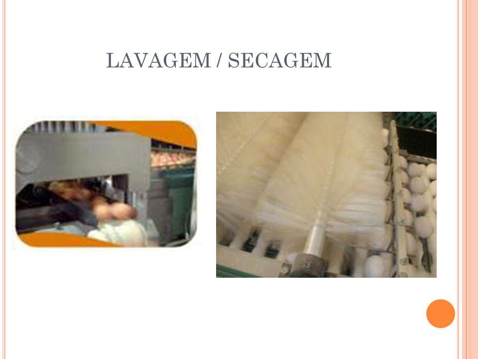 LAVAGEM / SECAGEM
