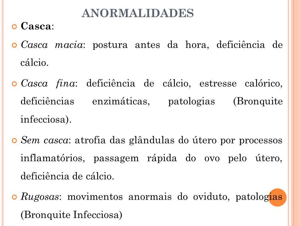 ANORMALIDADES Casca: Casca macia: postura antes da hora, deficiência de cálcio.
