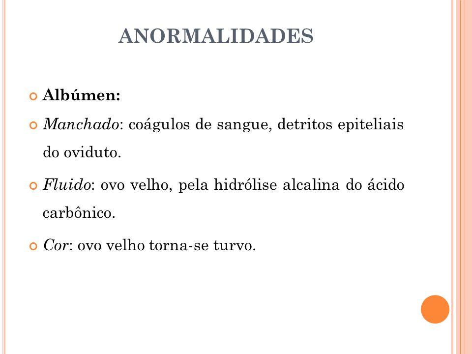 ANORMALIDADES Albúmen: