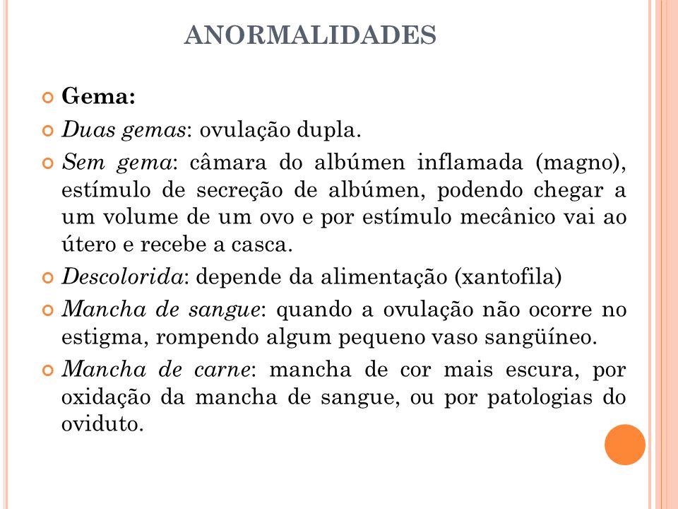 ANORMALIDADES Gema: Duas gemas: ovulação dupla.
