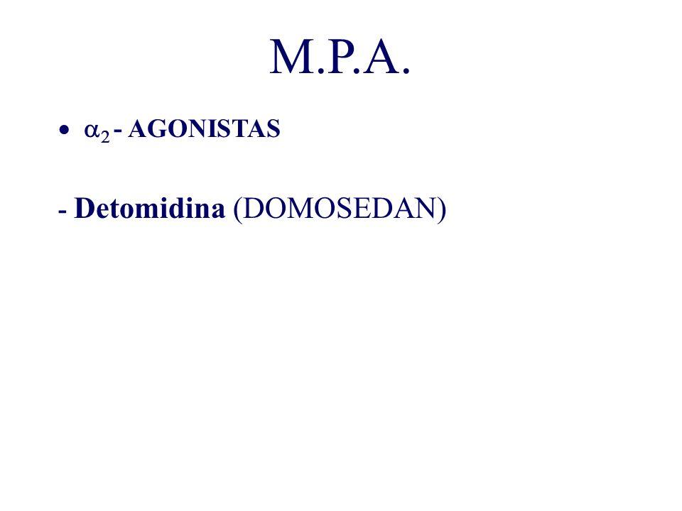 M.P.A. a2 - AGONISTAS - Detomidina (DOMOSEDAN)