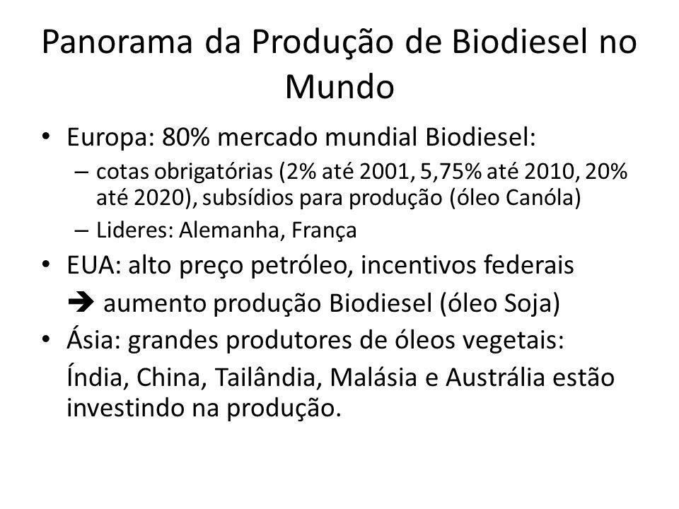 Panorama da Produção de Biodiesel no Mundo