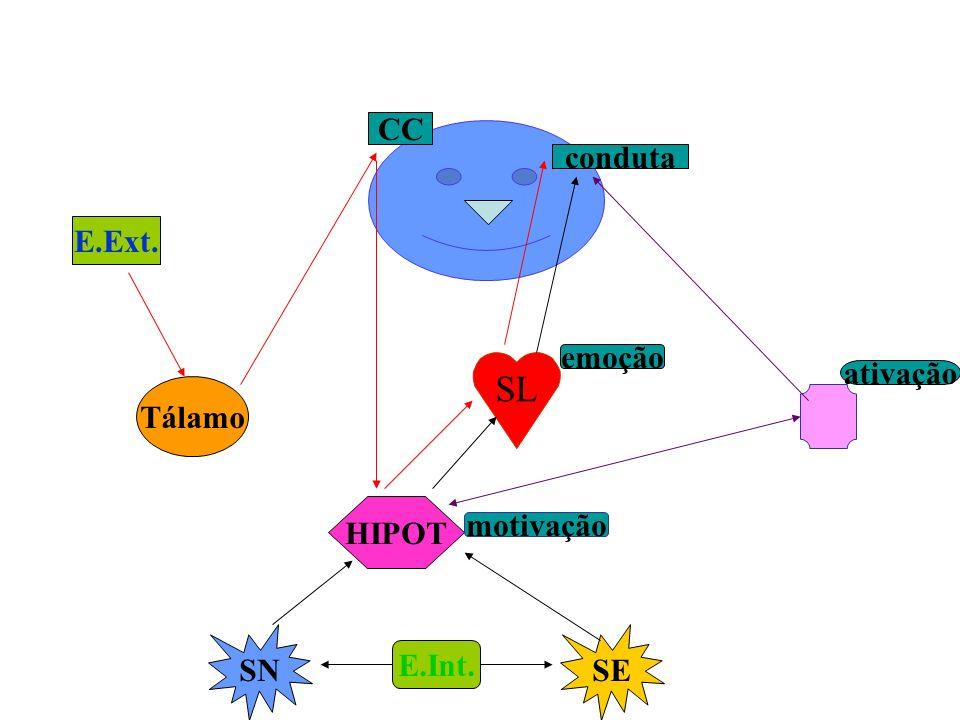 SL CC conduta E.Ext. emoção ativação Tálamo HIPOT motivação SN SE