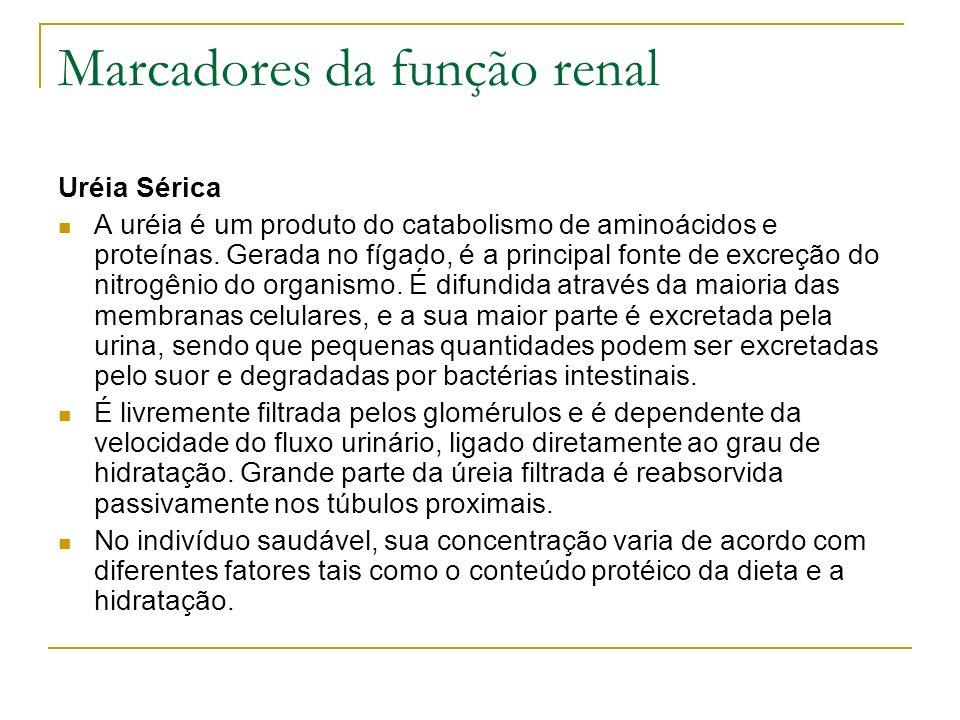 Marcadores da função renal