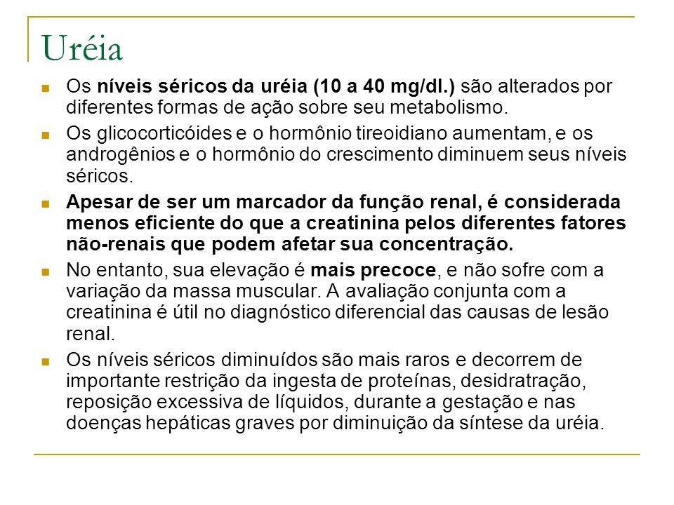Uréia Os níveis séricos da uréia (10 a 40 mg/dl.) são alterados por diferentes formas de ação sobre seu metabolismo.