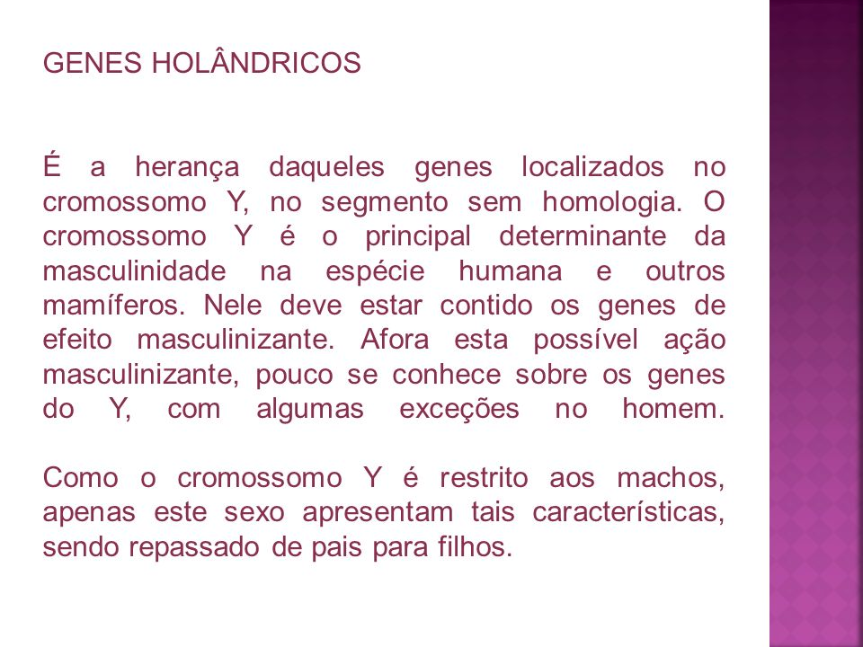 GENES HOLÂNDRICOS