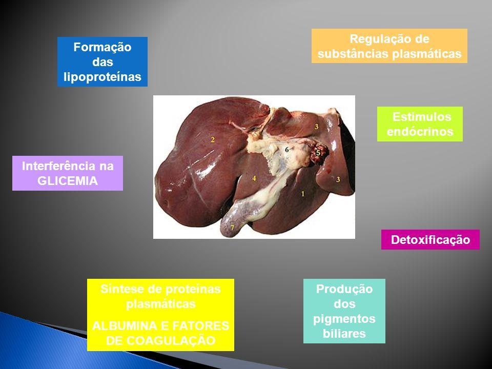 Regulação de substâncias plasmáticas Formação das lipoproteínas