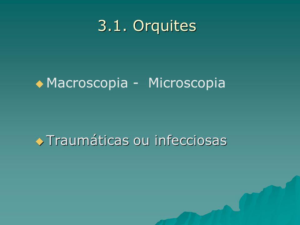 3.1. Orquites Macroscopia - Microscopia Traumáticas ou infecciosas