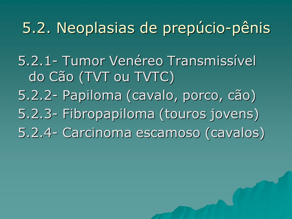 5.2. Neoplasias de prepúcio-pênis