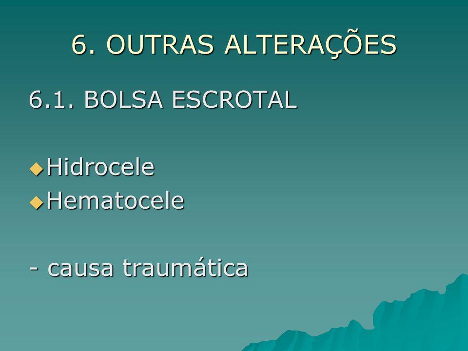 6. OUTRAS ALTERAÇÕES 6.1. BOLSA ESCROTAL Hidrocele Hematocele