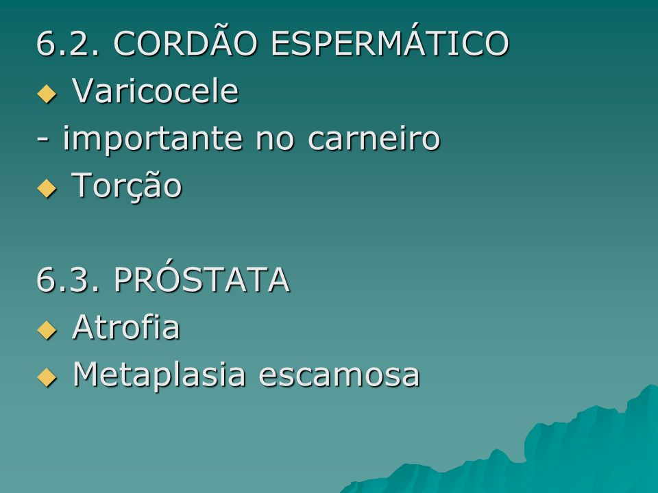 6.2. CORDÃO ESPERMÁTICO Varicocele. - importante no carneiro.