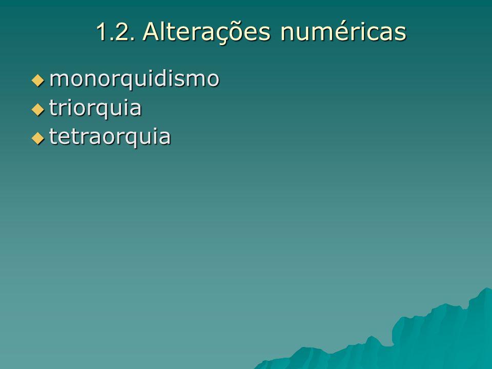 1.2. Alterações numéricas monorquidismo triorquia tetraorquia