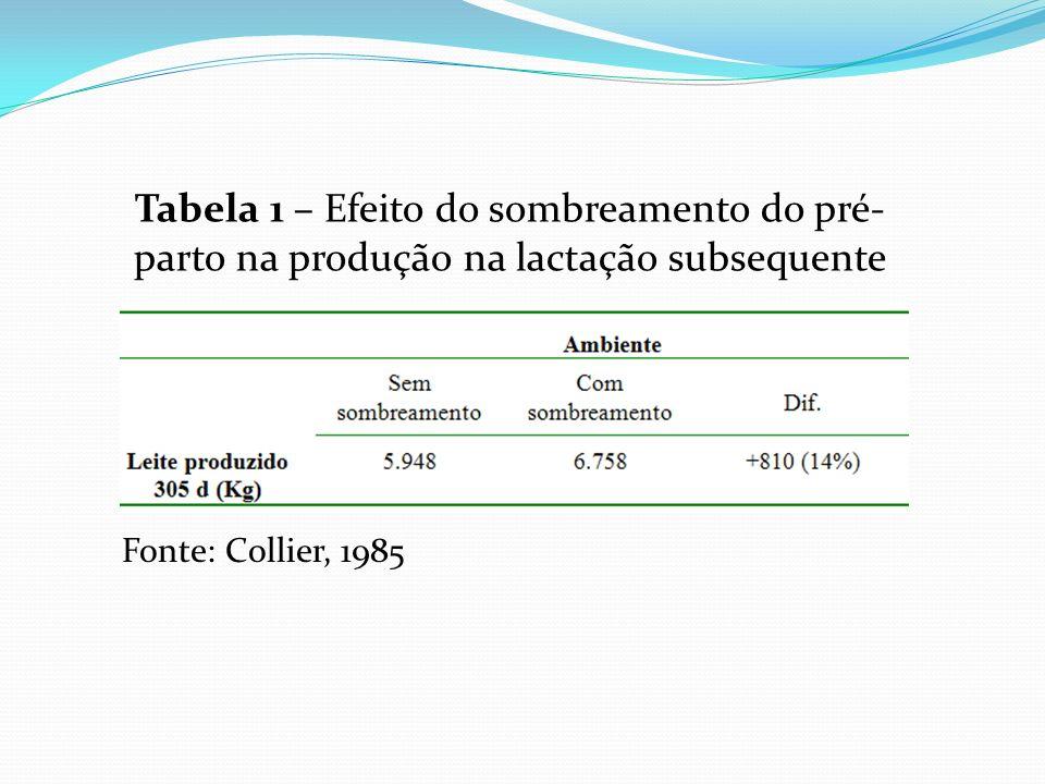 Tabela 1 – Efeito do sombreamento do pré-parto na produção na lactação subsequente