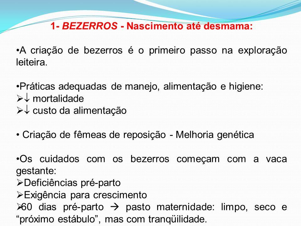 1- BEZERROS - Nascimento até desmama: