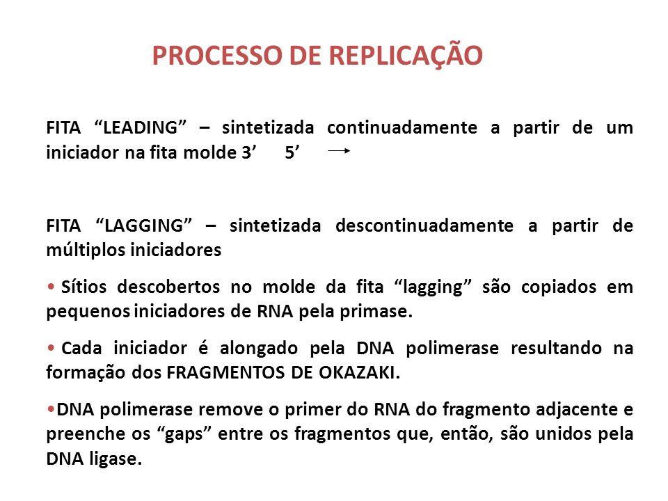 PROCESSO DE REPLICAÇÃO