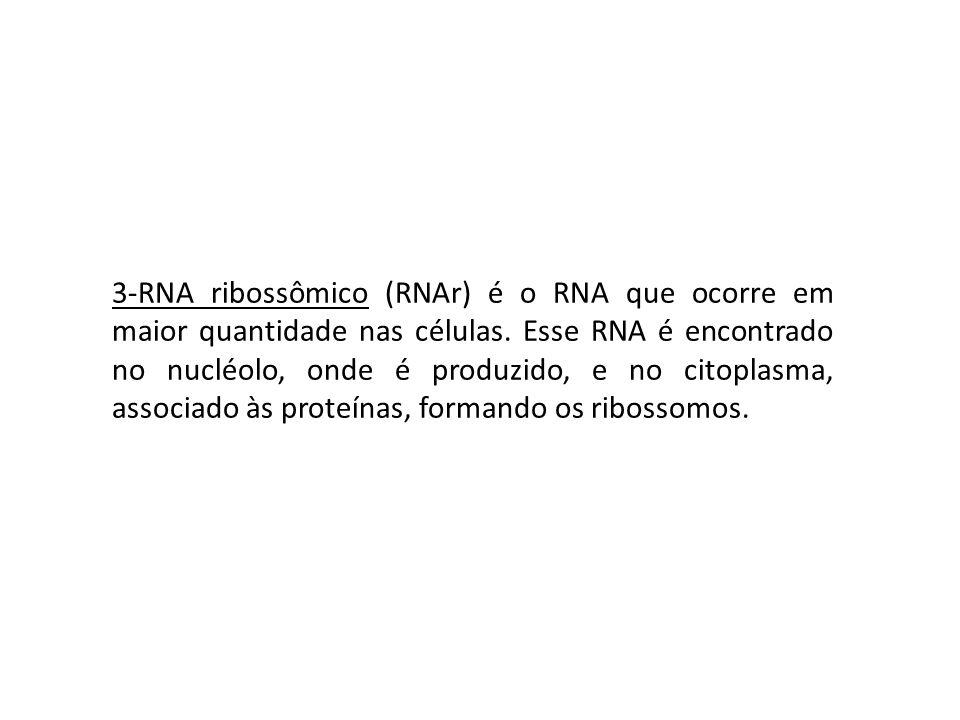 3-RNA ribossômico (RNAr) é o RNA que ocorre em maior quantidade nas células.