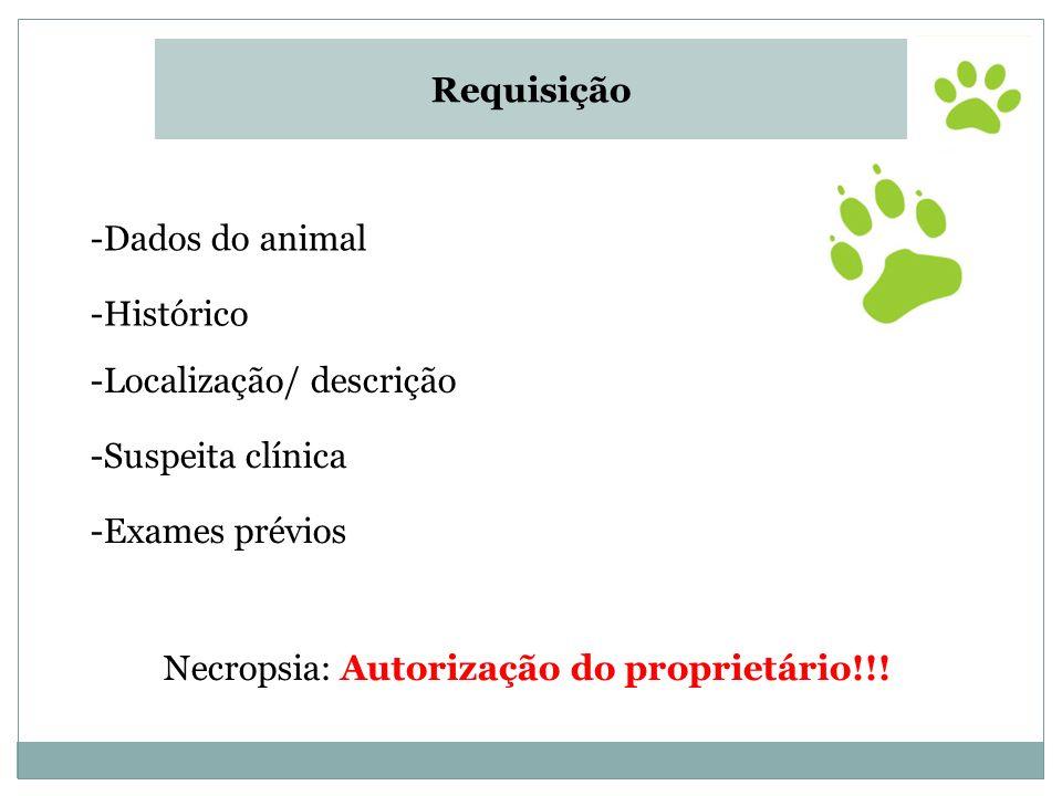 Requisição Dados do animal. Histórico. Localização/ descrição. Suspeita clínica. Exames prévios.