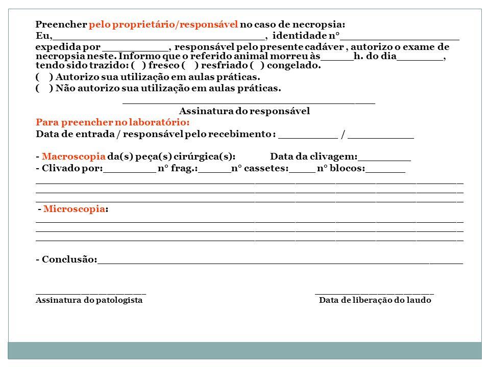 Assinatura do responsável
