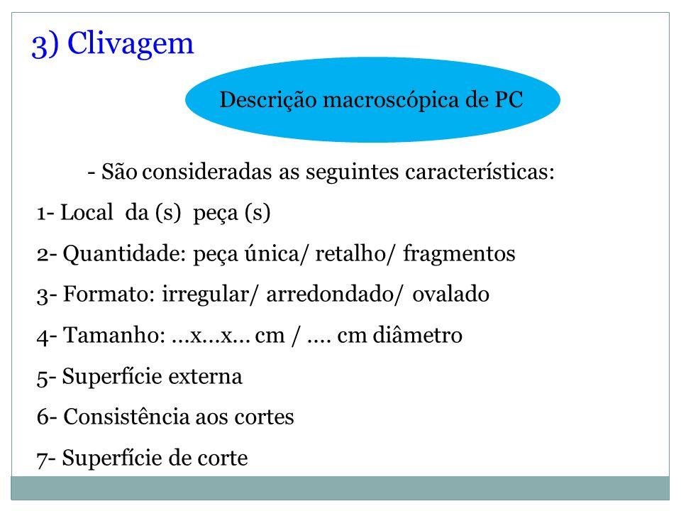 - São consideradas as seguintes características: