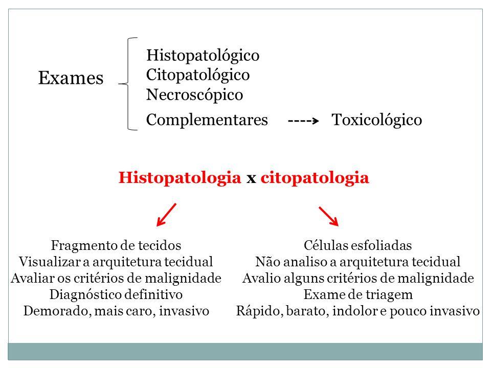 Exames Histopatológico Citopatológico Necroscópico Toxicológico
