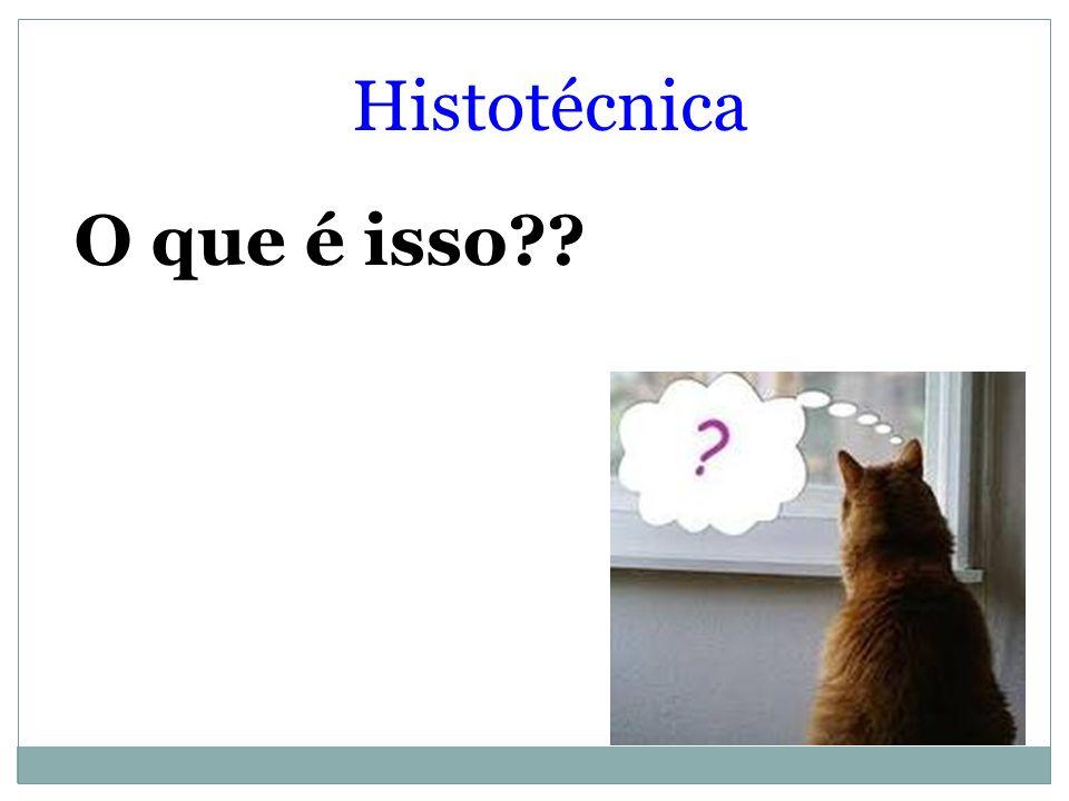 Histotécnica O que é isso