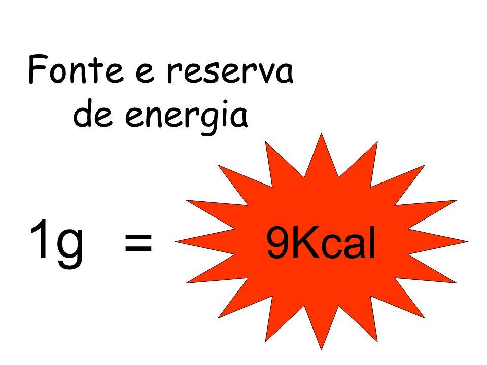 Fonte e reserva de energia