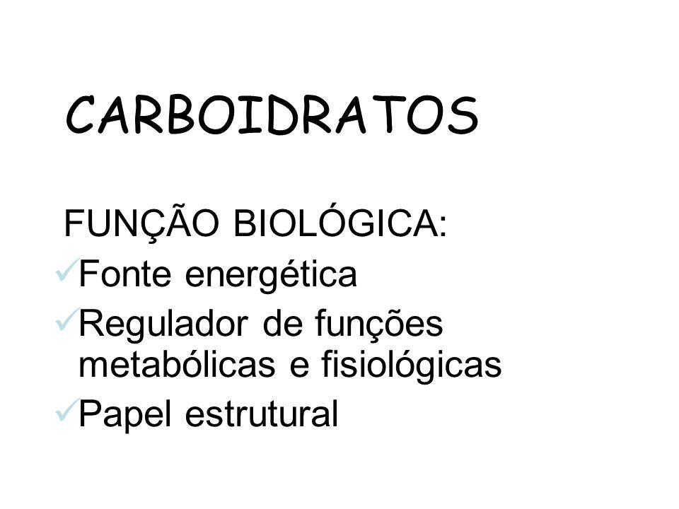 CARBOIDRATOS FUNÇÃO BIOLÓGICA: Fonte energética