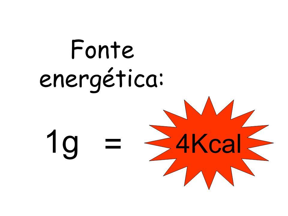 Fonte energética: 4Kcal 1g =