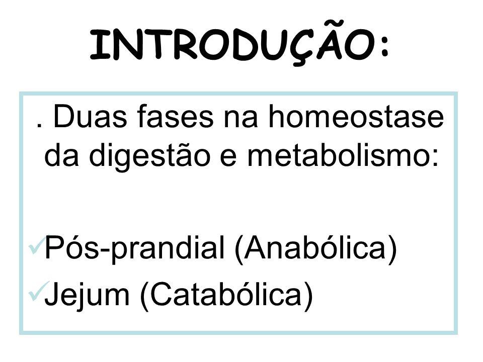 INTRODUÇÃO: . Duas fases na homeostase da digestão e metabolismo: