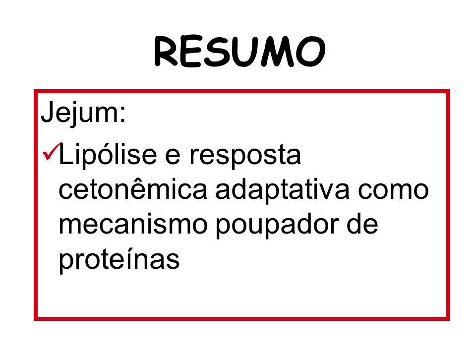 RESUMO Jejum: Lipólise e resposta cetonêmica adaptativa como mecanismo poupador de proteínas