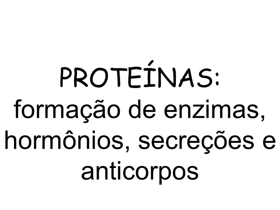 PROTEÍNAS: formação de enzimas, hormônios, secreções e anticorpos