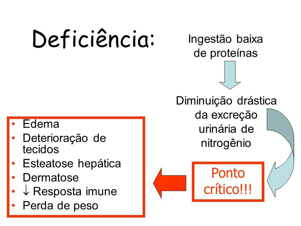 Deficiência: Ponto crítico!!! Ingestão baixa de proteínas