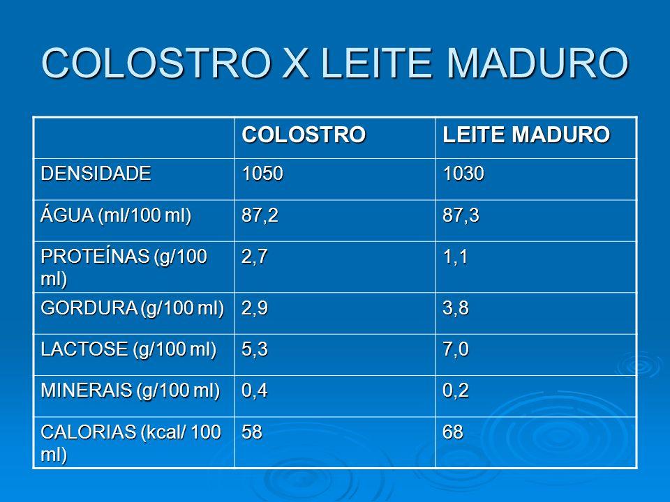 COLOSTRO X LEITE MADURO