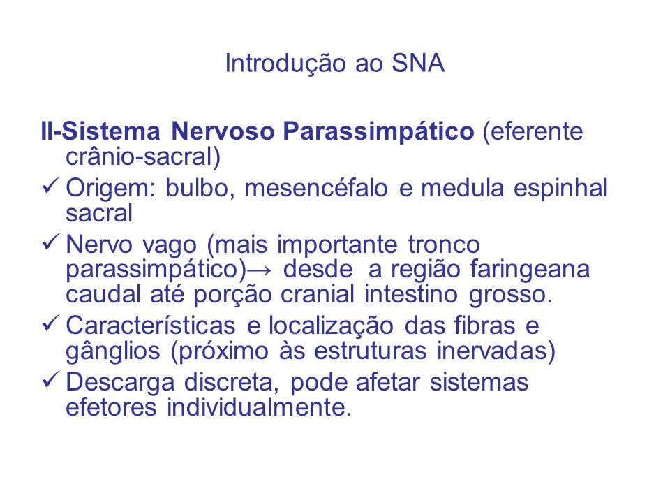 Introdução ao SNA II-Sistema Nervoso Parassimpático (eferente crânio-sacral) Origem: bulbo, mesencéfalo e medula espinhal sacral.