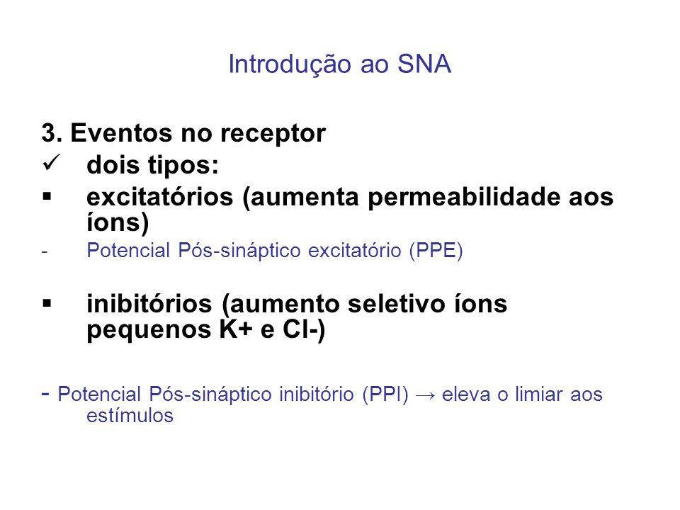 excitatórios (aumenta permeabilidade aos íons)