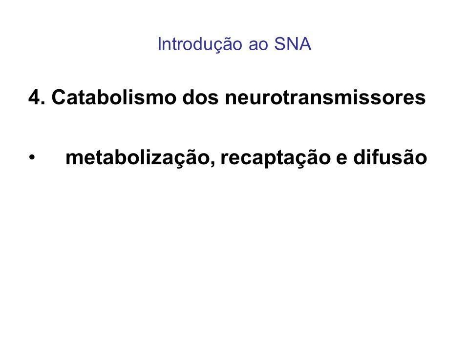 4. Catabolismo dos neurotransmissores